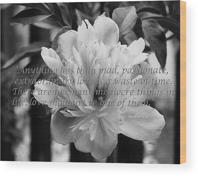 Flowers Wood Print featuring the photograph Anything Less by Heather S Huston