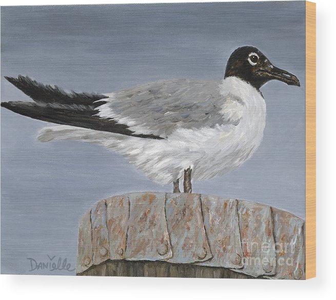 Seagull Wood Print featuring the painting Bimini Gull by Danielle Perry