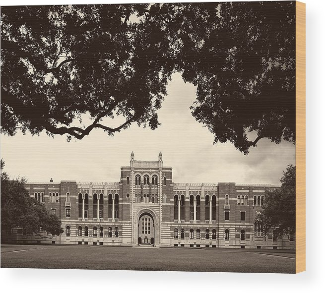 Hdr Wood Print featuring the photograph Campus Of Rice University by Mountain Dreams