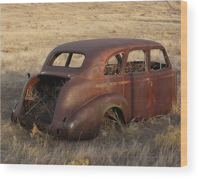 Nature Wood Print featuring the photograph Car At Rust by David Kehrli