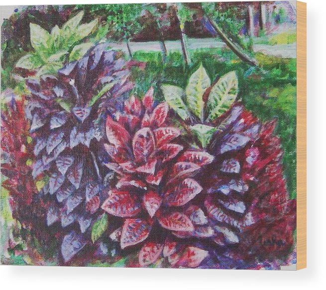 Landscape Wood Print featuring the painting Crotons 1 by Usha Shantharam