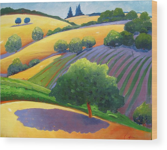 Landscape Wood Print featuring the painting Danny by Gary Coleman