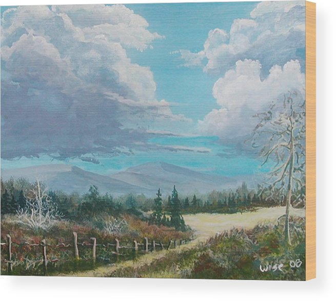 Lanscape Wood Print featuring the painting Down To The Meadow by John Wise