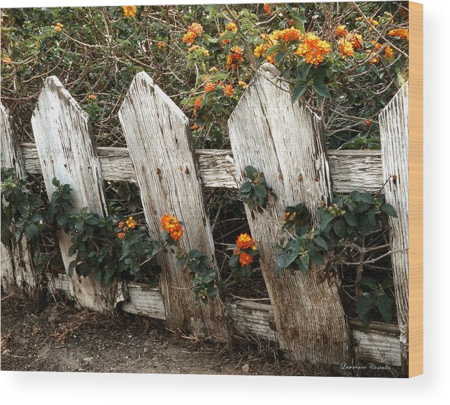 Flowers Wood Print featuring the photograph Elsinore Fence by Lawrence Costales