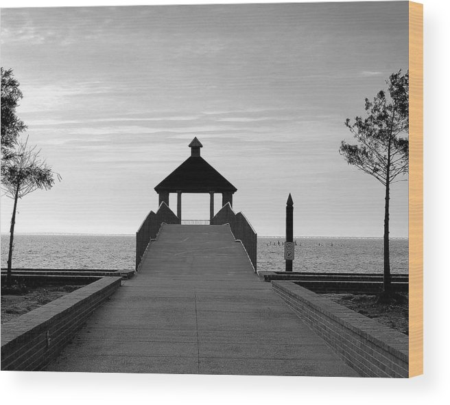 Water Wood Print featuring the photograph Fontainbleu State Park by Heather S Huston