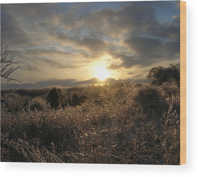 Landscape Wood Print featuring the photograph Ice To Sun by Martie DAndrea
