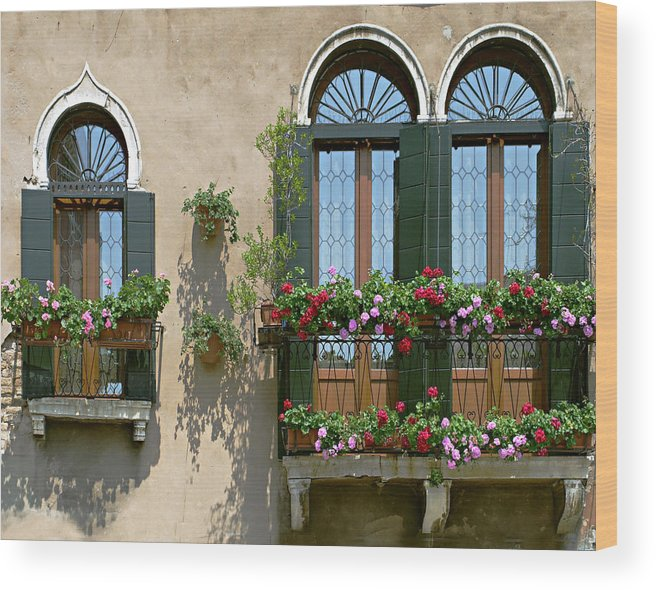 Windows Wood Print featuring the photograph Italian Windows by Julie Geiss