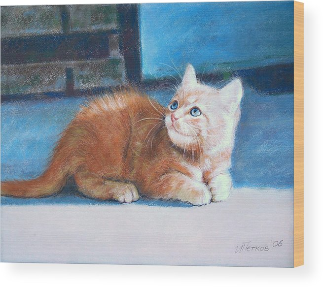 Cats Wood Print featuring the painting Kitten by Iliyan Bozhanov