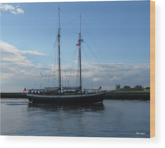 Tall Ships Wood Print featuring the photograph Mist Of Avalon by Alison Gimpel