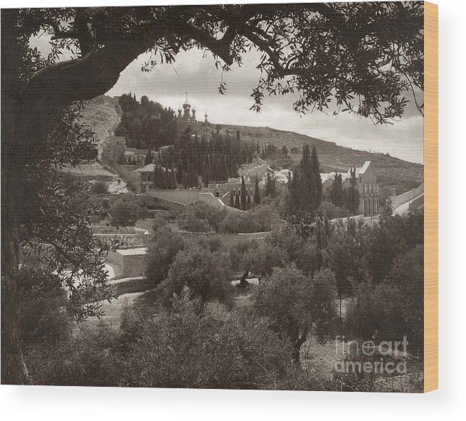 1930 Wood Print featuring the photograph Mount Of Olives by Granger