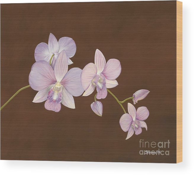 Orchid Wood Print featuring the painting Pink Orchids by Shawn Stallings