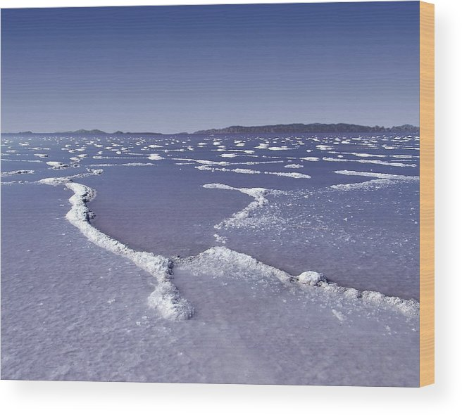 Utah Wood Print featuring the photograph Salt Formations Great Salt Lake Ut Usa by David Sidwell