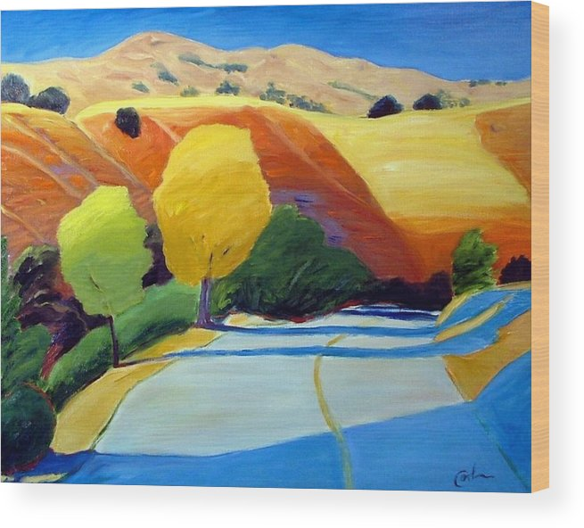 Road Wood Print featuring the painting Shadows On Metcalf Road by Gary Coleman