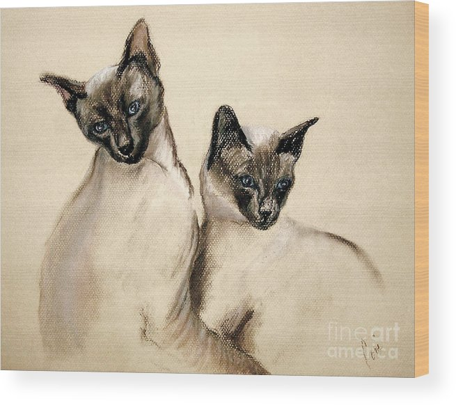 Cat Wood Print featuring the drawing Sibling Love by Cori Solomon