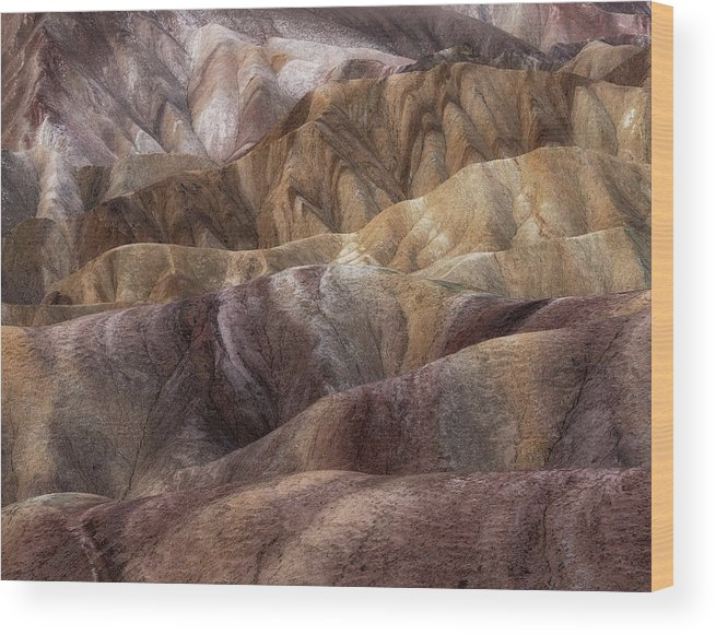 Landscape Wood Print featuring the photograph Painted Desert by Rob Darby