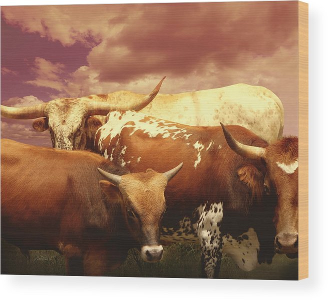 Cow Wood Print featuring the photograph animals - cows- Longhorns La Familia by Ann Powell