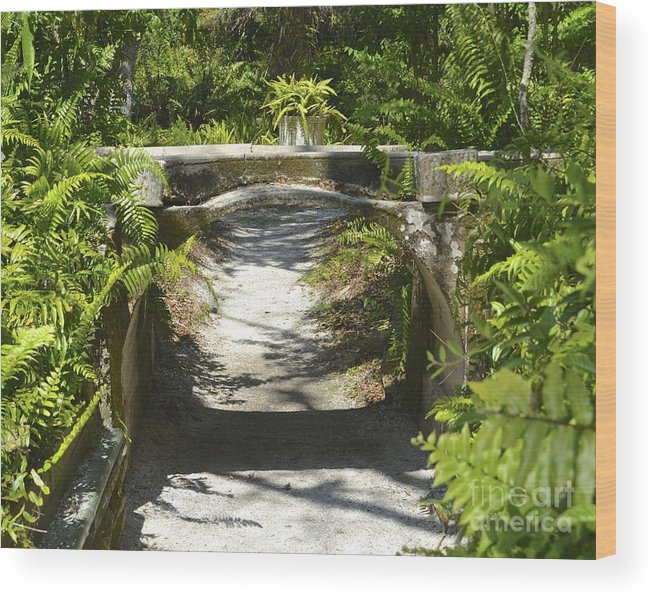 Aqueduct Wood Print featuring the photograph Aquaduct by Carol Bradley