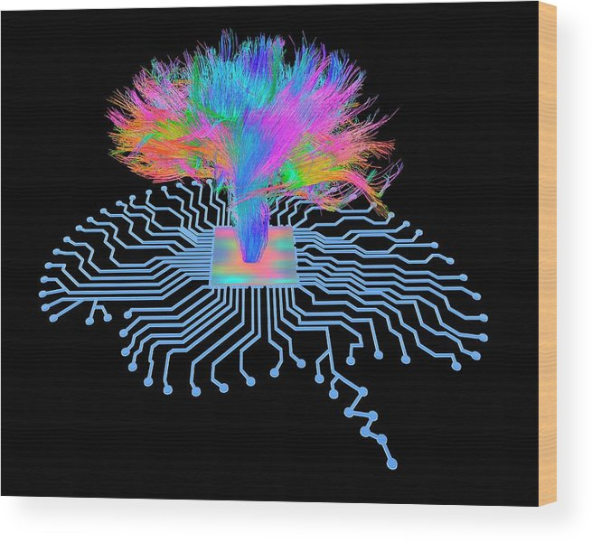 Artwork Wood Print featuring the photograph Brain Shaped Circuit Board With Fibres by Alfred Pasieka/science Photo Library