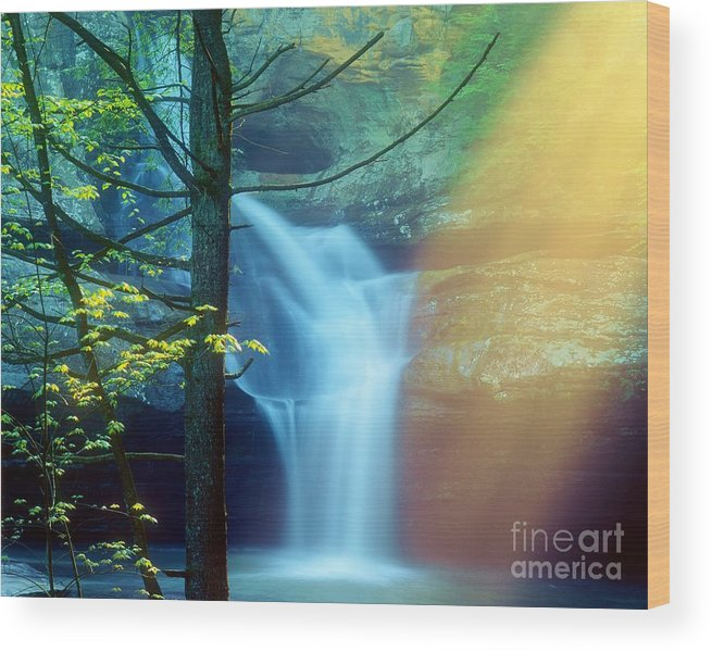 Cedar Falls Wood Print featuring the photograph Cedar Falls In The Mist. by Larry Knupp