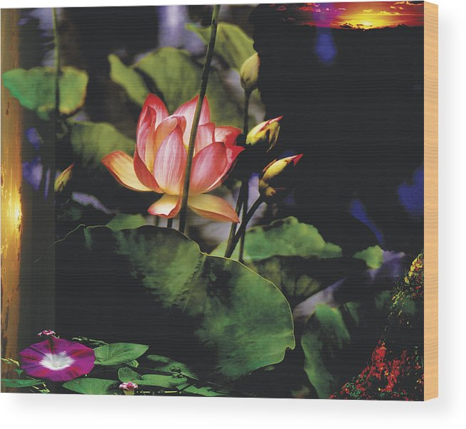 Lily Wood Print featuring the photograph Sunset Lily by Joel Zimmerman