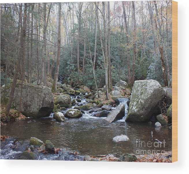Cosby Creek Wood Print featuring the photograph Cosby Creek by Roger Potts