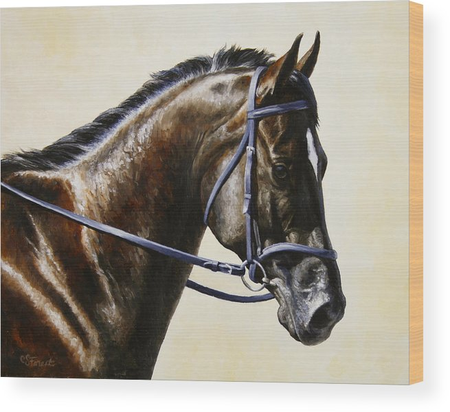 Horse Wood Print featuring the painting Dressage Horse - Concentration by Crista Forest