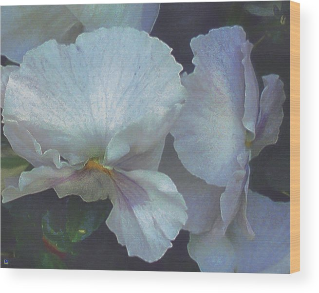 White Flower Wood Print featuring the photograph Flower Fantasy Four by Muriel Levison Goodwin