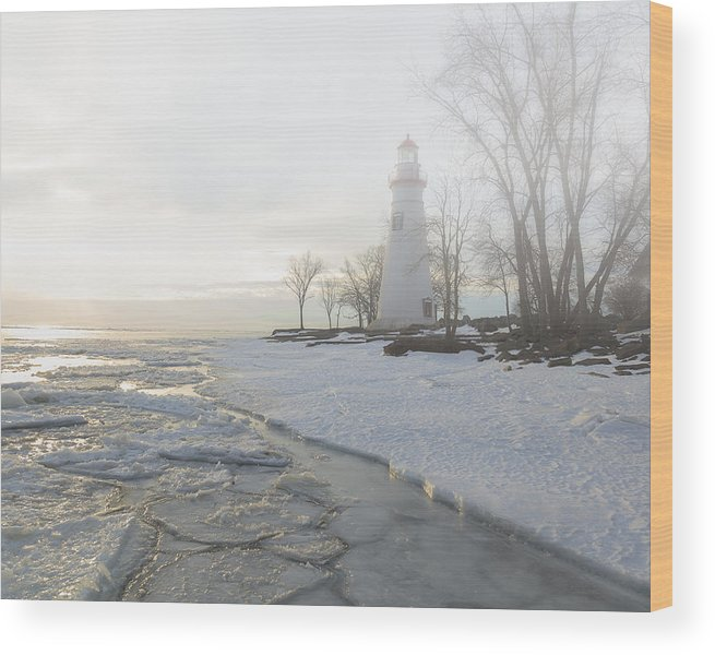 Erie Wood Print featuring the photograph Foggy Marblehead by Jack R Perry