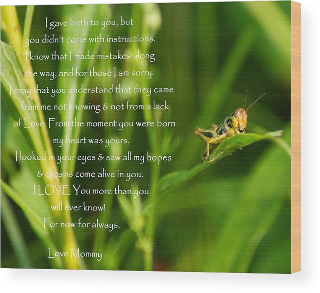 Andrew Lahay Photography Wood Print featuring the photograph Inspirational Wall Art 1 by Andrew Lahay