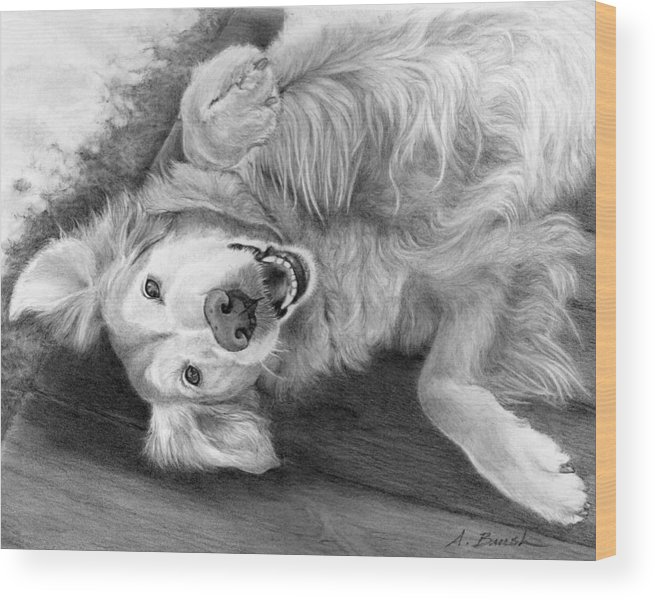 Golden Retriever Wood Print featuring the drawing Laila by Alison Brush