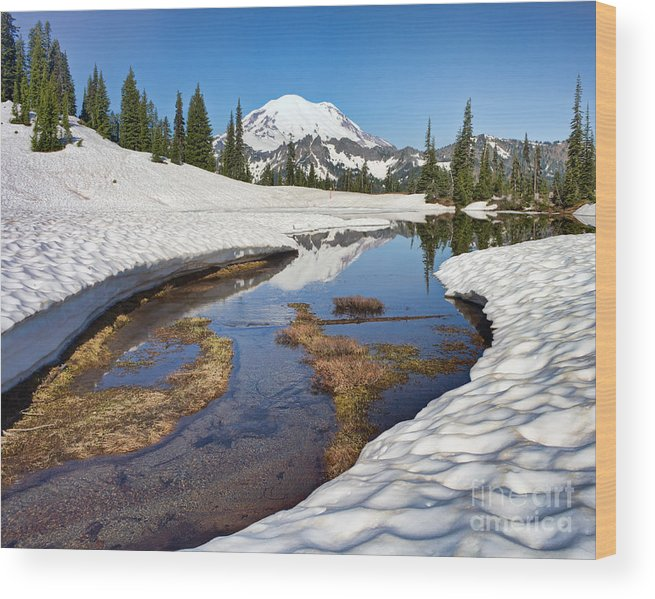 Landscape Wood Print featuring the photograph Lake Tipsoo Thaw by Don Hall