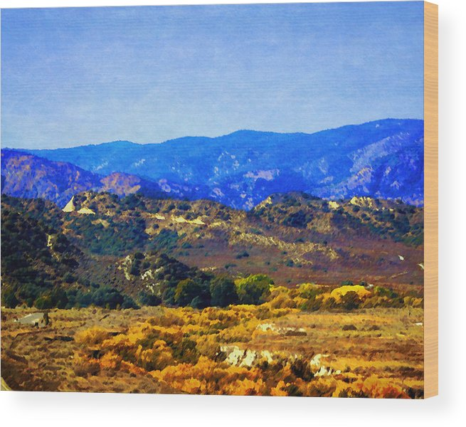 Gorman Wood Print featuring the photograph Late Blooms In Hungry Valley by Timothy Bulone