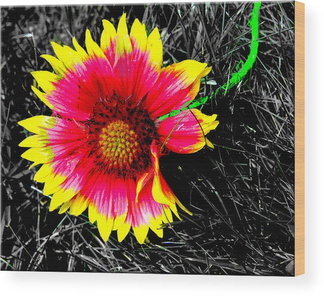 Wood Print featuring the photograph Neon Flowers by Brie Bramble