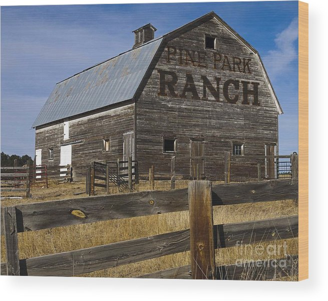 Old Barn Wood Print featuring the photograph Old Barn by Bill Long