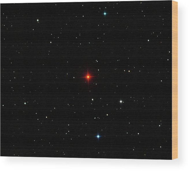 R Leporis Wood Print featuring the photograph R Leporis Variable Star by Damian Peach