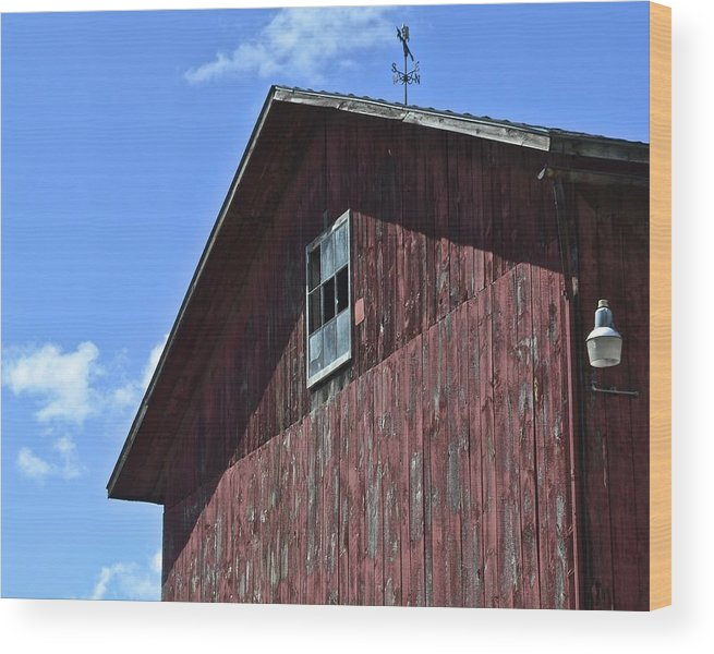 Red Wood Print featuring the photograph Red White And Blue by Frozen in Time Fine Art Photography
