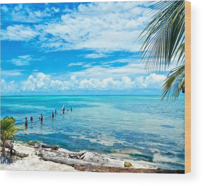 Art Photography Wood Print featuring the photograph Secluded Beach On Caye Caulker Belize by Mary Stuart