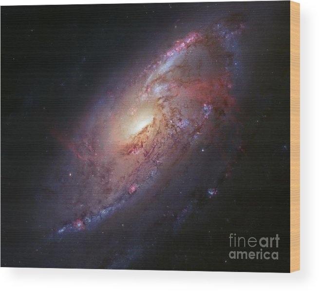 Astronomical Wood Print featuring the photograph Spiral Galaxy M106, Hubble Image by Robert Gendler