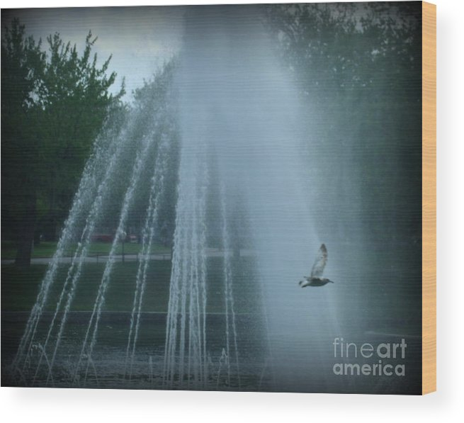 Mist Wood Print featuring the photograph Through The Mist by Christy Beal