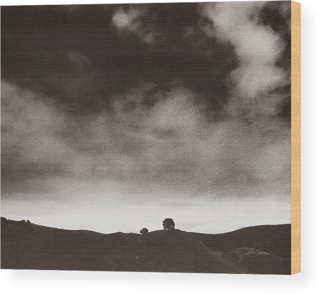 Northern California Wood Print featuring the photograph Tree Hill by Ari Jacobs