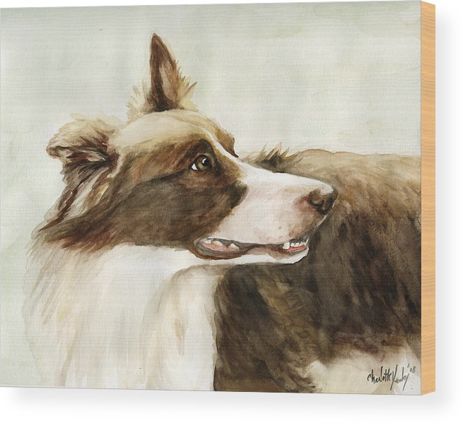 Border Collie Wood Print featuring the painting True Devotion by Charlotte Yealey
