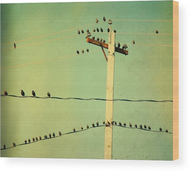 Retro Color Wood Print featuring the photograph Tweeters Tweeting by Gothicrow Images