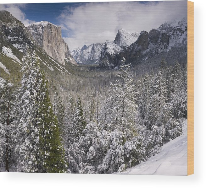 Beauty Wood Print featuring the photograph Yosemite Valley In Winter by Richard Berry