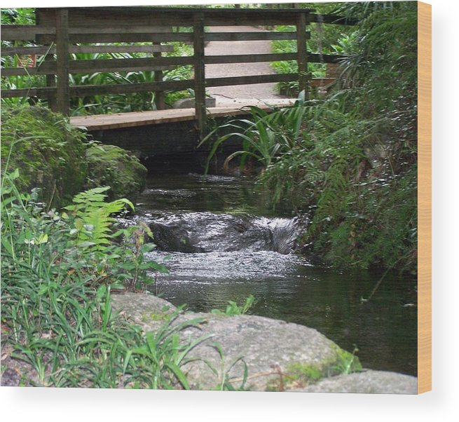 Landscape Wood Print featuring the photograph Bridging The Gap by Cheryl Matthew