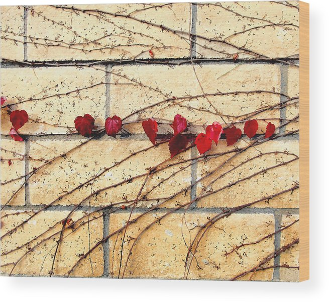 Vine Wood Print featuring the digital art Hearts On The Wall by Timothy Bulone