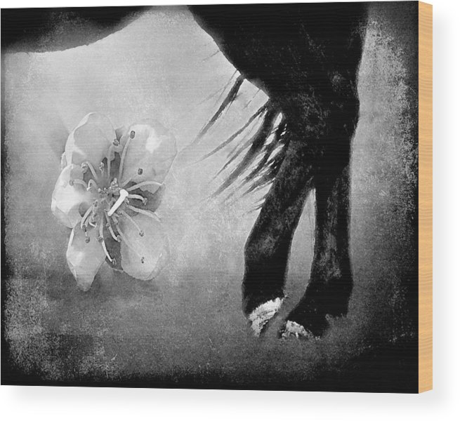 Black And White Wood Print featuring the photograph I Dream In Black And White by Megan Chambers