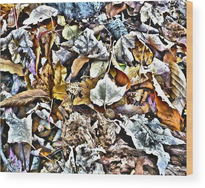 Leaves Wood Print featuring the digital art Leaves 02 by Ron DeMattio