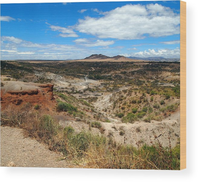 Africa Wood Print featuring the photograph Oldupai Gorge by Catherine Booth-Smith