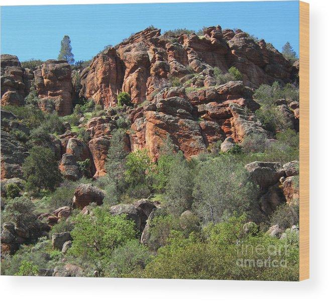 Artoffoxvox Wood Print featuring the photograph Pinnacles Rock Face Photograph by Kristen Fox