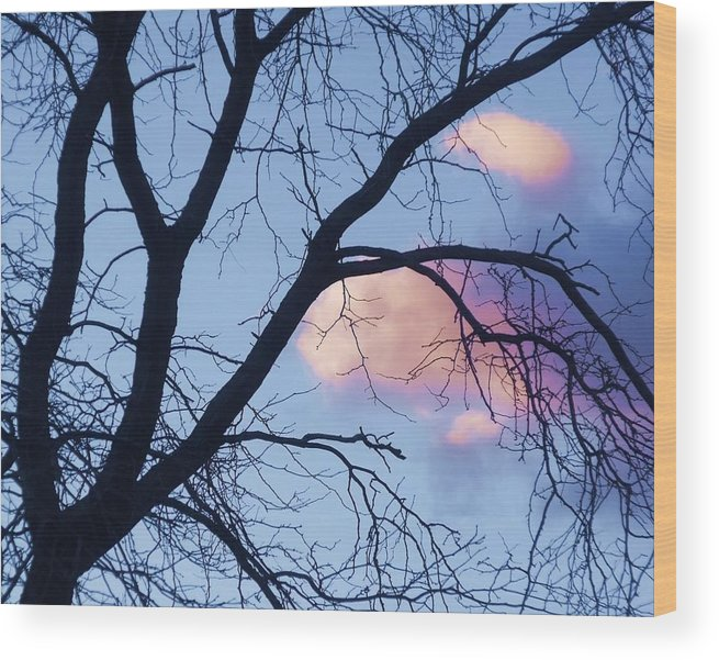 Trees Wood Print featuring the photograph Sunset Cloud Color 1 by Dave Dresser